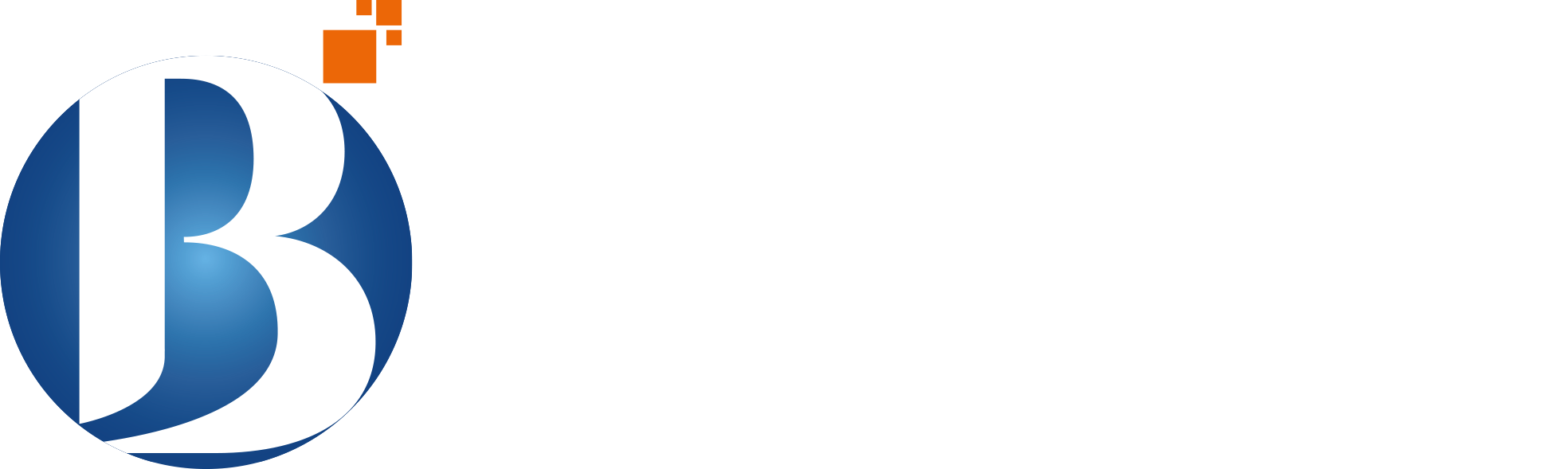 Broadway Infosys - IT Training in Nepal